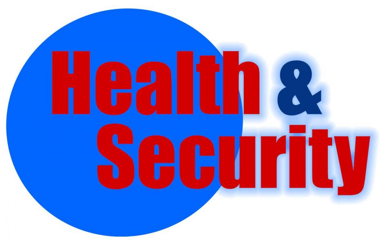 Health and Security Logo